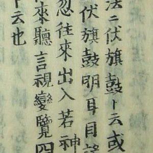 Definition of Shinobinomono