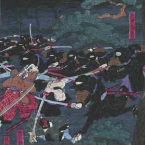 A shinobi night raid