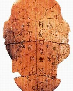 Ancient bottom tortoise shell used in platromancy diviniation, an ancient part of the Amatsu Tatara Shinto traditions
