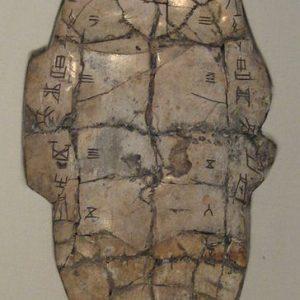 Shang dynasty inscribed tortoise plastron