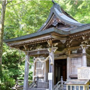 Kuzuryu Shrine - Shrine of the 9 headed dragon