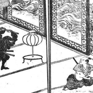 A shinobinomono on the prowl